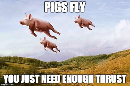 Pigs Fly | PIGS FLY YOU JUST NEED ENOUGH THRUST | image tagged in memes,pigs fly | made w/ Imgflip meme maker