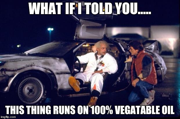 Back to the future | WHAT IF I TOLD YOU..... THIS THING RUNS ON 100% VEGATABLE OIL | image tagged in back to the future | made w/ Imgflip meme maker