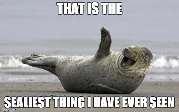 laughing seal | THAT IS THE SEALIEST THING I HAVE EVER SEEN | image tagged in laughing seal | made w/ Imgflip meme maker
