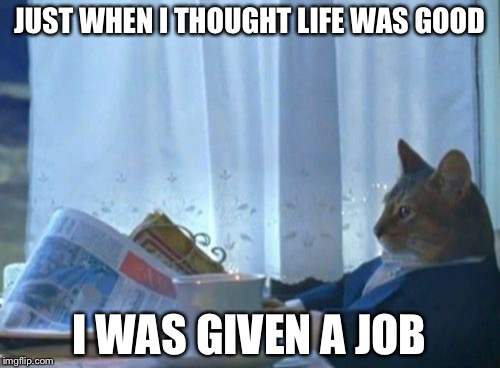 I Should Buy A Boat Cat Meme | JUST WHEN I THOUGHT LIFE WAS GOOD I WAS GIVEN A JOB | image tagged in memes,i should buy a boat cat | made w/ Imgflip meme maker