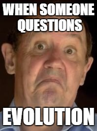 WHEN SOMEONE QUESTIONS EVOLUTION | image tagged in big history | made w/ Imgflip meme maker