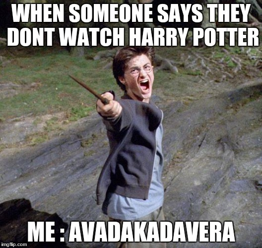 Harry potter | WHEN SOMEONE SAYS THEY DONT WATCH HARRY POTTER ME : AVADAKADAVERA | image tagged in harry potter | made w/ Imgflip meme maker