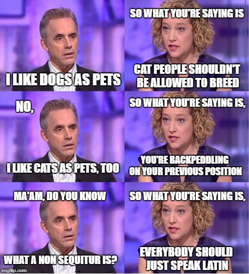 What the entire 30 minutes feels like | I LIKE DOGS AS PETS SO WHAT YOU'RE SAYING IS CAT PEOPLE SHOULDN'T BE ALLOWED TO BREED NO, I LIKE CATS AS PETS, TOO SO WHAT YOU'RE SAYING IS, | image tagged in jordan peterson vs feminist interviewer,feminism,feminists,debate | made w/ Imgflip meme maker