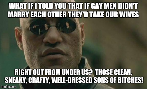 Everything you know is a lie! | WHAT IF I TOLD YOU THAT IF GAY MEN DIDN'T MARRY EACH OTHER THEY'D TAKE OUR WIVES RIGHT OUT FROM UNDER US? THOSE CLEAN, SNEAKY, CRAFTY, WELL | image tagged in memes,matrix morpheus,gay marriage,lgbtq,gay rights,civil rights | made w/ Imgflip meme maker