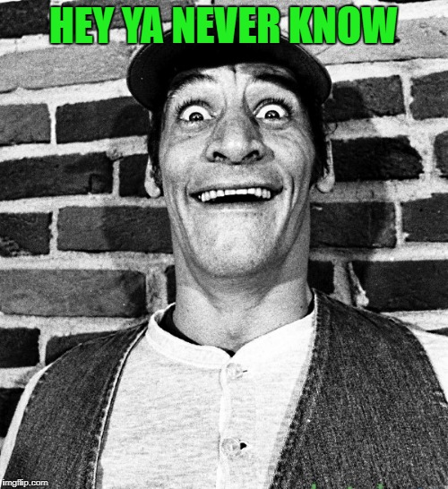know what i mean Vern? | HEY YA NEVER KNOW | image tagged in know what i mean vern | made w/ Imgflip meme maker