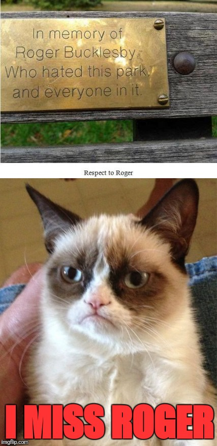 Birds of a feather |  I MISS ROGER | image tagged in grumpy cat,park,roger bucklesby,haters gonna hate | made w/ Imgflip meme maker