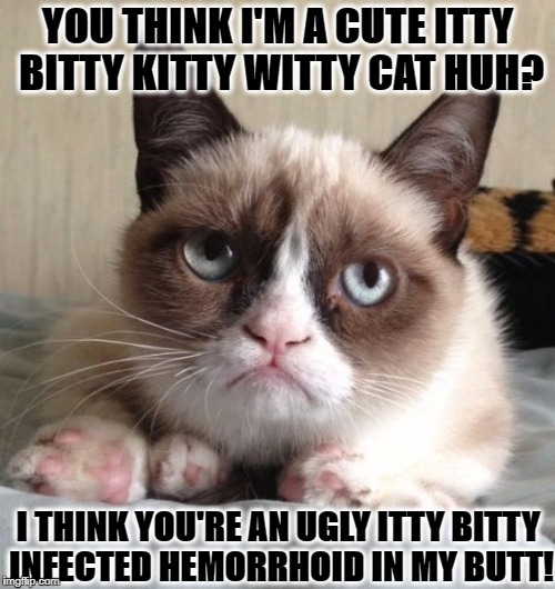 YOU THINK I'M A CUTE ITTY BITTY KITTY WITTY CAT HUH? I THINK YOU'RE AN UGLY ITTY BITTY INFECTED HEMORRHOID IN MY BUTT! | image tagged in grumpy cat | made w/ Imgflip meme maker