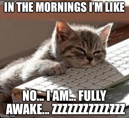 If only what I say was true, I hate mornings and can never stay awake |  IN THE MORNINGS I'M LIKE; NO... I AM... FULLY AWAKE... ZZZZZZZZZZZZZZ | image tagged in tired cat | made w/ Imgflip meme maker
