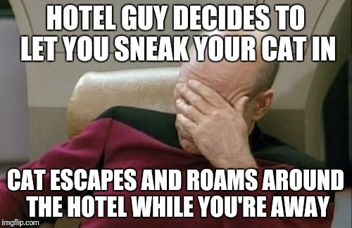 Captain Picard Facepalm Meme | HOTEL GUY DECIDES TO LET YOU SNEAK YOUR CAT IN CAT ESCAPES AND ROAMS AROUND THE HOTEL WHILE YOU'RE AWAY | image tagged in memes,captain picard facepalm | made w/ Imgflip meme maker
