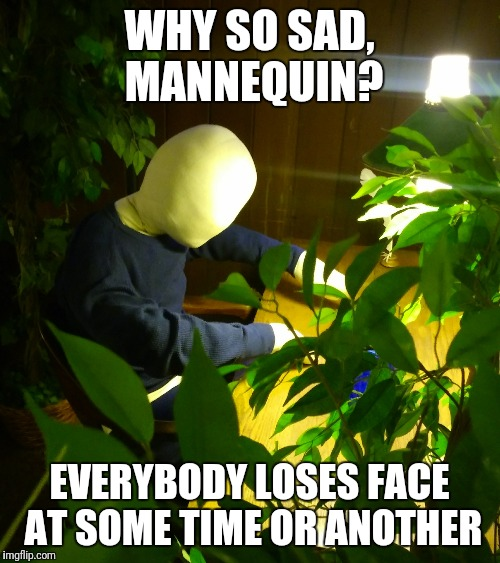 Lonely Dreamer | WHY SO SAD, MANNEQUIN? EVERYBODY LOSES FACE AT SOME TIME OR ANOTHER | image tagged in mannequin,sad | made w/ Imgflip meme maker