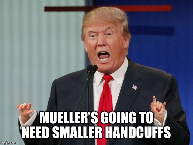 Trump hands | MUELLER'S GOING TO NEED SMALLER HANDCUFFS | image tagged in trump hands | made w/ Imgflip meme maker