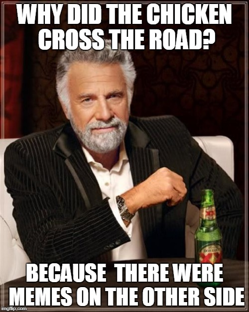 The Most Interesting Man In The World Meme | WHY DID THE CHICKEN CROSS THE ROAD? BECAUSE  THERE WERE MEMES ON THE OTHER SIDE | image tagged in memes,the most interesting man in the world | made w/ Imgflip meme maker
