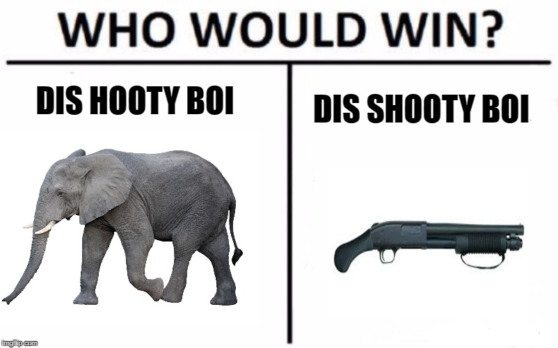 Who Would Win? Meme | DIS HOOTY BOI DIS SHOOTY BOI | image tagged in memes,who would win | made w/ Imgflip meme maker