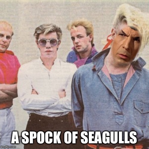 A SPOCK OF SEAGULLS | made w/ Imgflip meme maker