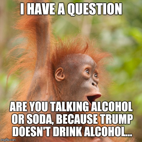 I HAVE A QUESTION ARE YOU TALKING ALCOHOL OR SODA, BECAUSE TRUMP DOESN'T DRINK ALCOHOL... | made w/ Imgflip meme maker