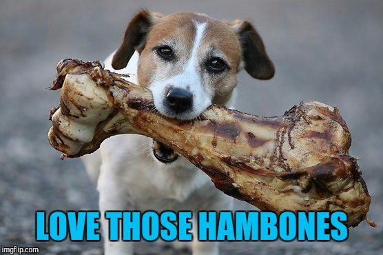 LOVE THOSE HAMBONES | made w/ Imgflip meme maker