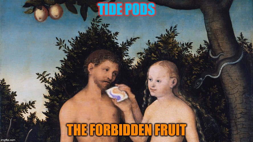 Seems Satan is more devious than previously thought!  | TIDE PODS THE FORBIDDEN FRUIT | image tagged in memes,tide pod challenge,tide pods,adam and eve in paradise the fall by lucas cranach the elder,forbidden fruit,adam and eve | made w/ Imgflip meme maker