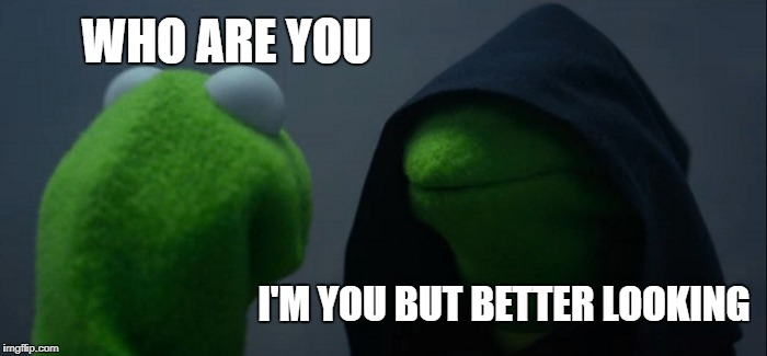 Evil Kermit Meme | WHO ARE YOU I'M YOU BUT BETTER LOOKING | image tagged in memes,evil kermit | made w/ Imgflip meme maker