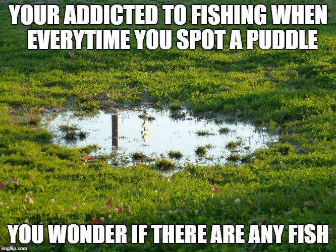 puddle-flood | YOUR ADDICTED TO FISHING WHEN  EVERYTIME YOU SPOT A PUDDLE YOU WONDER IF THERE ARE ANY FISH | image tagged in puddle-flood | made w/ Imgflip meme maker