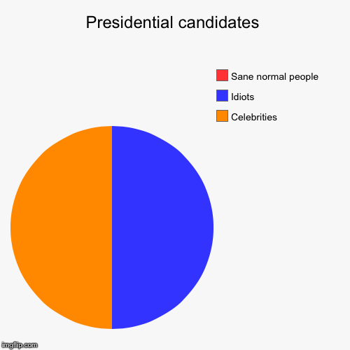 Presidential candidates | Celebrities, Idiots, Sane normal people | image tagged in funny,pie charts | made w/ Imgflip pie chart maker