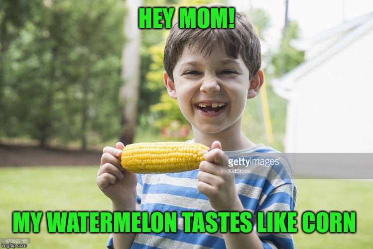 HEY MOM! MY WATERMELON TASTES LIKE CORN | made w/ Imgflip meme maker