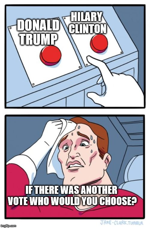 who would u chooose | DONALD TRUMP HILARY CLINTON IF THERE WAS ANOTHER VOTE WHO WOULD YOU CHOOSE? | image tagged in memes,two buttons | made w/ Imgflip meme maker