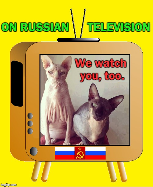 "The New Openness or ""Glastnost"" on Russian TV 