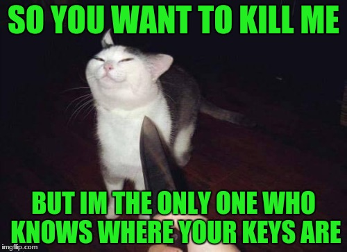 so you want to kill me? | SO YOU WANT TO KILL ME BUT IM THE ONLY ONE WHO KNOWS WHERE YOUR KEYS ARE | image tagged in so you want to kill me | made w/ Imgflip meme maker