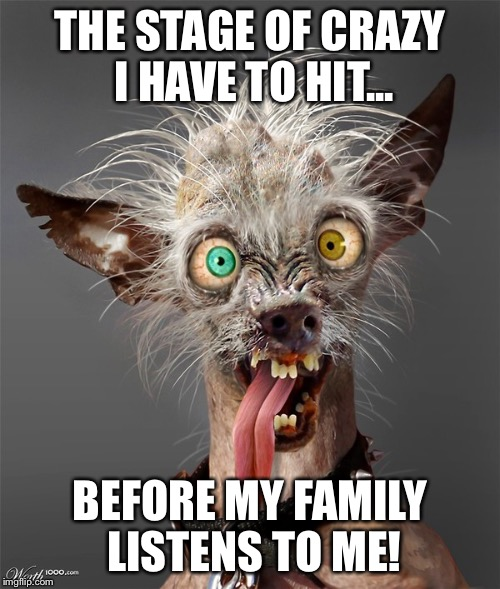 THE STAGE OF CRAZY I HAVE TO HIT... BEFORE MY FAMILY LISTENS TO ME! | image tagged in crazy dog | made w/ Imgflip meme maker
