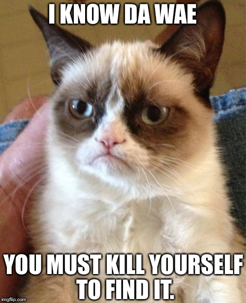 Grumpy Cat | I KNOW DA WAE YOU MUST KILL YOURSELF TO FIND IT. | image tagged in memes,da wae,grumpy cat | made w/ Imgflip meme maker