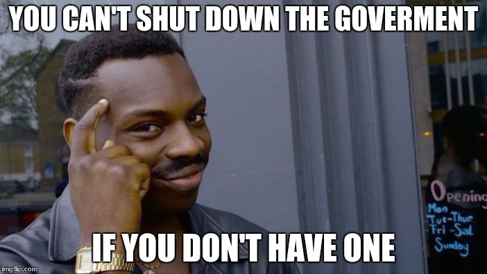 Roll Safe Think About It Meme | YOU CAN'T SHUT DOWN THE GOVERMENT IF YOU DON'T HAVE ONE | image tagged in memes,roll safe think about it | made w/ Imgflip meme maker