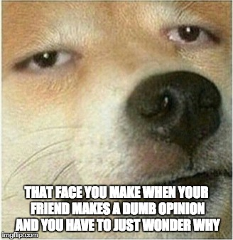 THAT FACE YOU MAKE WHEN YOUR FRIEND MAKES A DUMB OPINION AND YOU HAVE TO JUST WONDER WHY | image tagged in omg | made w/ Imgflip meme maker
