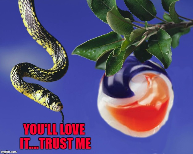 YOU'LL LOVE IT....TRUST ME | made w/ Imgflip meme maker