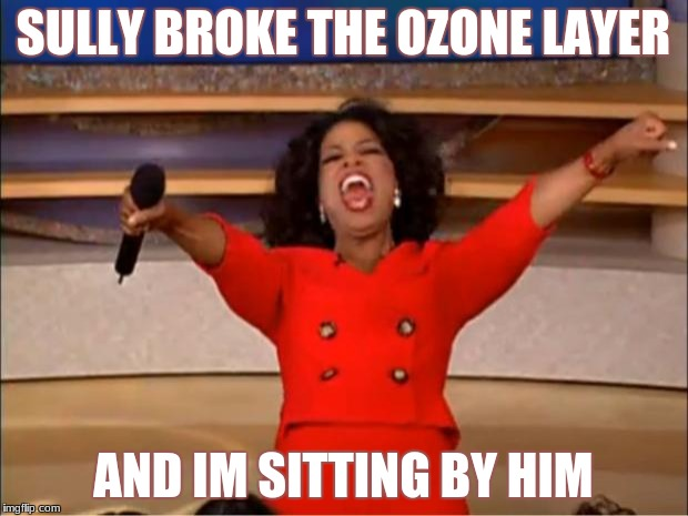 Oprah You Get A Meme | SULLY BROKE THE OZONE LAYER AND IM SITTING BY HIM | image tagged in memes,oprah you get a | made w/ Imgflip meme maker