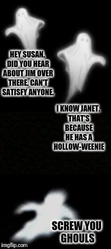A Ghost Pun / Ghost Week Jan. 21-27...A LaurynFlint Event | HEY SUSAN. DID YOU HEAR ABOUT JIM OVER THERE. CAN'T SATISFY ANYONE. SCREW YOU GHOULS I KNOW JANET. THAT'S BECAUSE HE HAS A HOLLOW-WEENIE | image tagged in ghost,ghost week,ghosts,bad joke,bad pun | made w/ Imgflip meme maker
