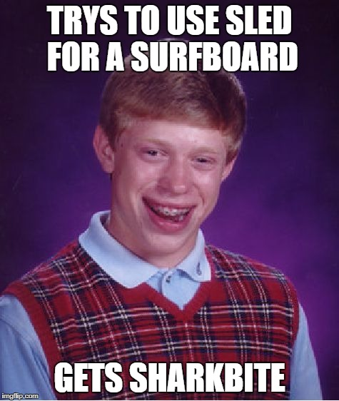 Bad Luck Brian Meme | TRYS TO USE SLED FOR A SURFBOARD GETS SHARKBITE | image tagged in memes,bad luck brian | made w/ Imgflip meme maker