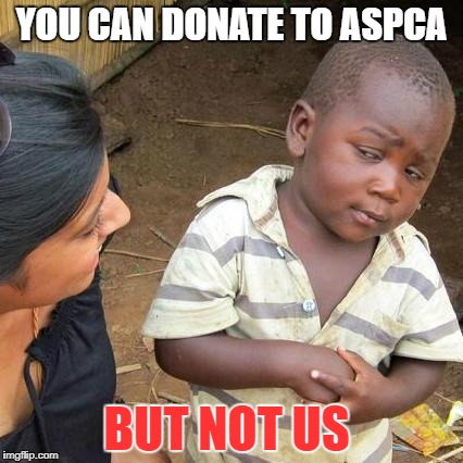 Third World Skeptical Kid Meme | YOU CAN DONATE TO ASPCA BUT NOT US | image tagged in memes,third world skeptical kid | made w/ Imgflip meme maker