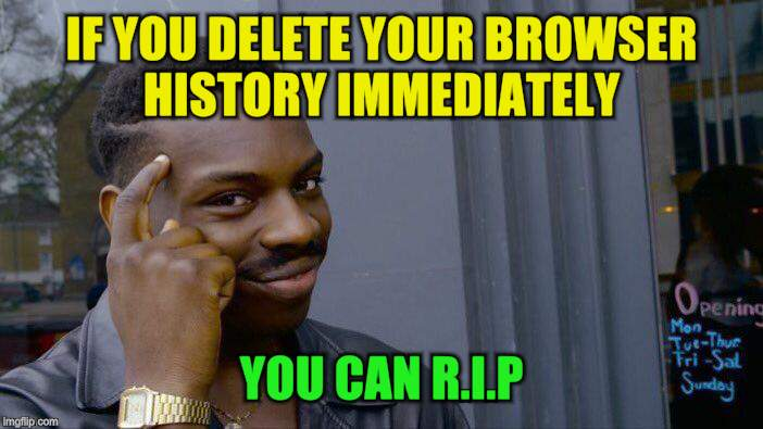 Roll Safe Think About It Meme | IF YOU DELETE YOUR BROWSER HISTORY IMMEDIATELY YOU CAN R.I.P | image tagged in memes,roll safe think about it | made w/ Imgflip meme maker