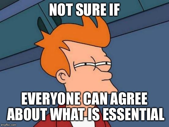 Futurama Fry Meme | NOT SURE IF EVERYONE CAN AGREE ABOUT WHAT IS ESSENTIAL | image tagged in memes,futurama fry | made w/ Imgflip meme maker