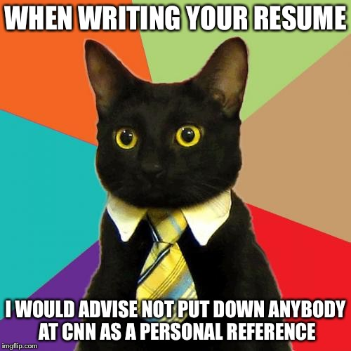 Business Cat Meme | WHEN WRITING YOUR RESUME I WOULD ADVISE NOT PUT DOWN ANYBODY AT CNN AS A PERSONAL REFERENCE | image tagged in memes,business cat | made w/ Imgflip meme maker