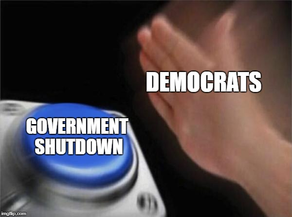 Blank Nut Button Meme | DEMOCRATS GOVERNMENT SHUTDOWN | image tagged in memes,blank nut button | made w/ Imgflip meme maker