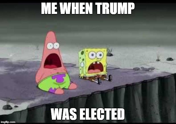 Surprised Patrick  | ME WHEN TRUMP WAS ELECTED | image tagged in surprised patrick | made w/ Imgflip meme maker