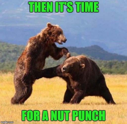 THEN IT'S TIME FOR A NUT PUNCH | made w/ Imgflip meme maker