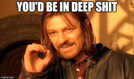 One Does Not Simply Meme | YOU'D BE IN DEEP SHIT | image tagged in memes,one does not simply | made w/ Imgflip meme maker