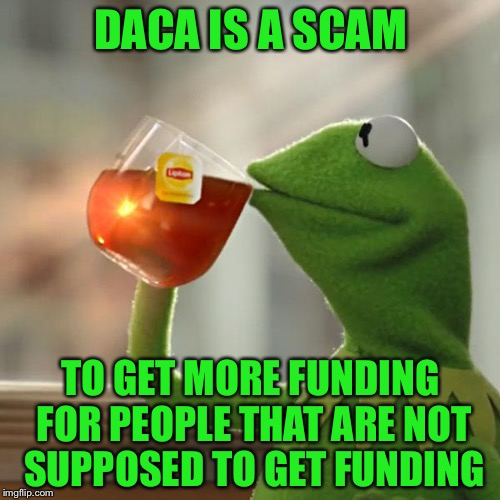 But Thats None Of My Business Meme | DACA IS A SCAM TO GET MORE FUNDING FOR PEOPLE THAT ARE NOT SUPPOSED TO GET FUNDING | image tagged in memes,but thats none of my business,kermit the frog | made w/ Imgflip meme maker
