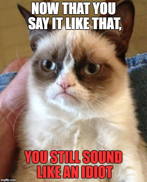 Grumpy Cat Meme | NOW THAT YOU SAY IT LIKE THAT, YOU STILL SOUND LIKE AN IDIOT | image tagged in memes,grumpy cat | made w/ Imgflip meme maker