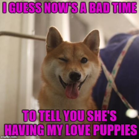 I GUESS NOW'S A BAD TIME TO TELL YOU SHE'S HAVING MY LOVE PUPPIES | made w/ Imgflip meme maker