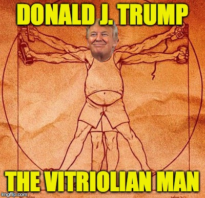 DONALD J. TRUMP THE VITRIOLIAN MAN | image tagged in vitriolian man | made w/ Imgflip meme maker