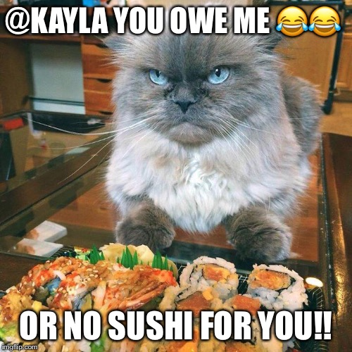 @KAYLA YOU OWE ME  | image tagged in no sushi for you | made w/ Imgflip meme maker