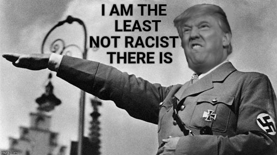 Donald Trump Hitler | I AM THE   LEAST NOT RACIST    THERE IS | image tagged in donald trump hitler | made w/ Imgflip meme maker